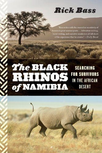 Black Rhinos of Namibia